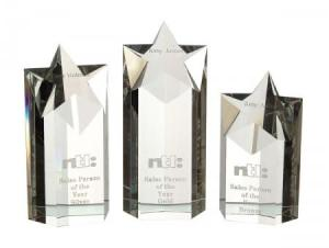 Medium Optical Crystal Star Column Award