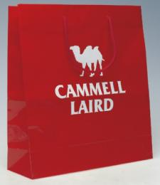 Gloss Laminated Foil Blocked Paper Carrier Bag